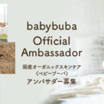 bb_blog_ambassador